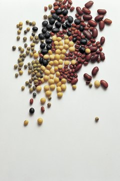 Beans are one example of a high-protein food.