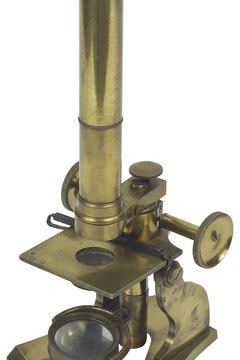 Zacharias Janssen invented the compound microscope.