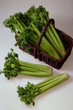 Celery is a rich source of insoluble fiber.
