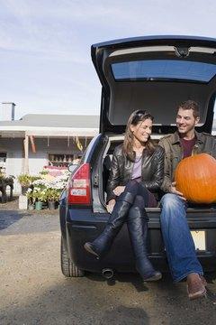 Buy farm-fresh pumpkins and make pumpkin pie.