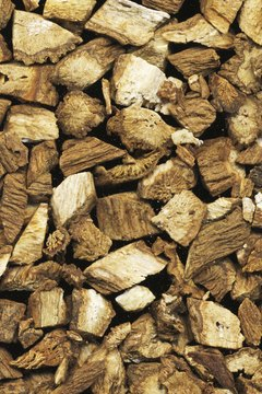 Burdock root has been used as an herbal medicine for centuries.