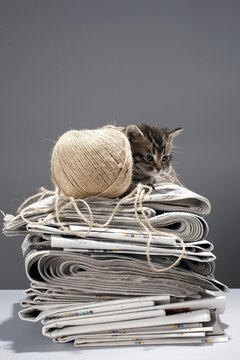 Those newspapers provide a cozy, warm spot for Fluffy to nap.