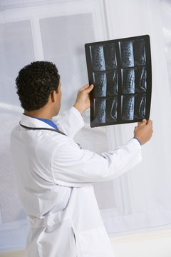 Vets use X-rays to accurately diagnose injuries.