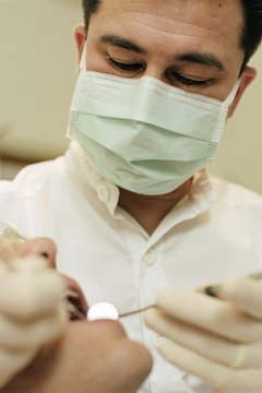Orthodontists follow the same initial career paths as dentists.