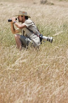 Photographers do more than simply take pictures.