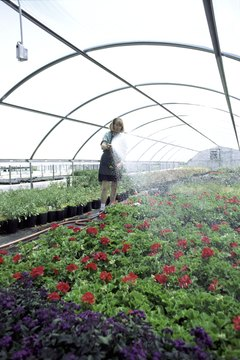 Many botany schools feature on-campus greenhouses.
