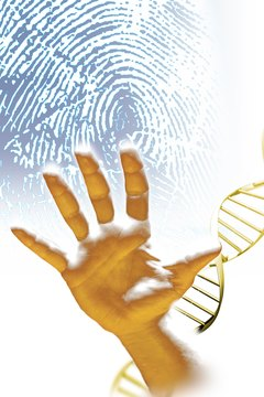 Foundational biology courses will help students more clearly understand DNA behavior and structure, which are essential concepts in forensic science.