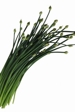 Fresh chives contain a small amount of fiber.