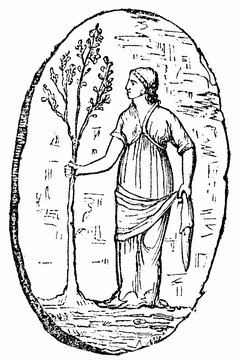 Athena planted an olive tree in Athens.