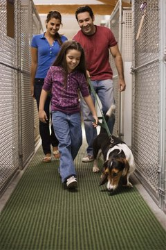Working with an animal-rescue group can give you some tax write-offs.