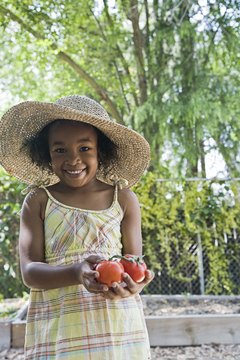 Give your preschooler firsthand experience with planting and harvesting vegetables.