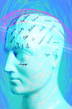 Studying brain damage, cognitive neuropsychologists seek to understand normal cognitive processes.