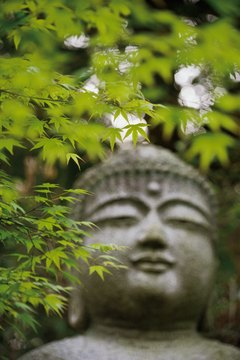 A Buddha Statue at Peace in Nature