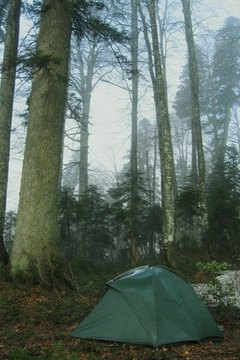 Adirondack Leadership Expeditions' wilderness programs help struggling teens overcome problems.