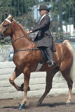 The school also offers a one-day and a six-day trim class for horse owners.