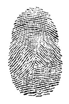 Fingerprinting requires an appointment and processing fees.