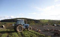 Iniciar una granja es mucho más fácil cuando parte de la financiación proviene de donaciones.