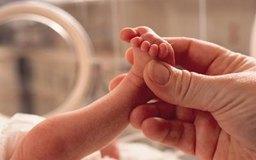 Las enfermeras neonatales proveen cuidados a los recién nacidos.