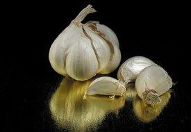 Benefits of Odorless Garlic