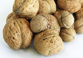 Are Walnuts Good Fiber?