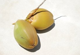 What Are the Health Benefits of Coconut Juice?