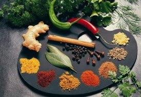 Salt-Free Diet Menus
