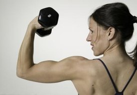 Bicep & Back Workouts