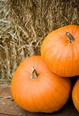Is Canned Pumpkin Healthy?