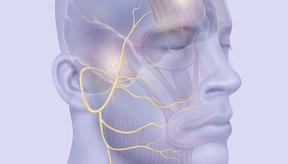 Existen ejercicios específicos para recuperarse de la parálisis facial.