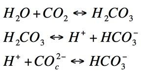 CO2 en el océano