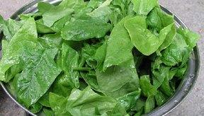 Las verduras de hoja verde y los cereales integrales son buenas fuentes de hierro.