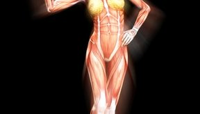 Building lean muscle will create a lithe appearance.