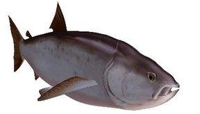 El salmón es una fuente ideal de ácidos grasos omega-3.