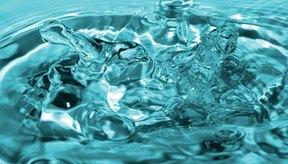 El agua es el nutriente más importante del cuerpo.
