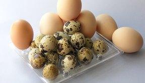 Los huevos son una buena fuente de proteína.