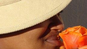 Las máscaras faciales de carbón pueden aclarar las manchas de la piel.