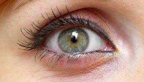 El ojo absorbe la luz entrante y la convierte en impulsos eléctricos.