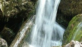 El agua es importante para todos los seres vivos de la Tierra.