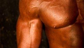 Los suplementos de creatina están diseñados para ayudar a construir músculo.