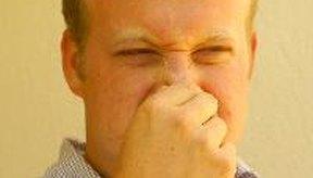 Las náuseas de corto plazo pueden ser causadas por ciertos olores, enfermedad del movimiento o el miedo.