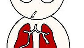 Los pulmones no son simétricos.