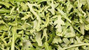 La rúcula se asemeja a las hojas de rábano.