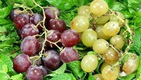 Las semillas de la uva son un sano agregado para tu dieta.