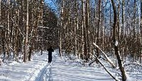 El esquí a campo traviesa es un ejercicio para trabajar todo el cuerpo.