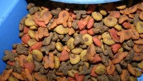 El alimento seco no es una buena opción para la salud del tracto urinario.