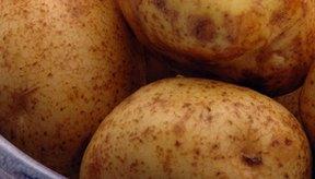 Las patatas son el cuarto cultivo más importante del mundo.