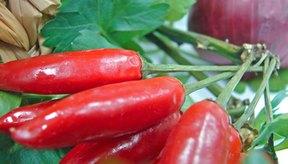 La capsaicina es responsable de la sensación de quemazón provocada por comer picante.