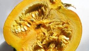 Muchas comidas comunes son excelentes fuentes de vitamina E