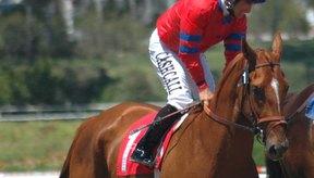 El peso de un jockey es una principal consideración de la carrera.