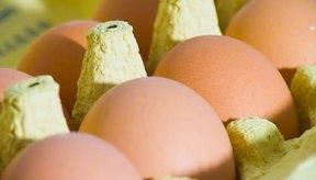Los huevos tienen mucho colesterol, por lo que no son recomendables.